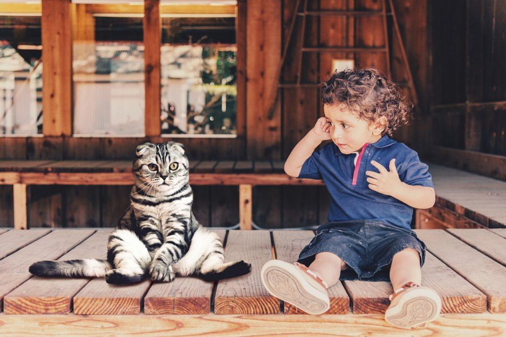 Dziecko i kot siedzące na drewnianym tarasie. Symbol zmiany cywilizacyjnej w homo sedentarius.