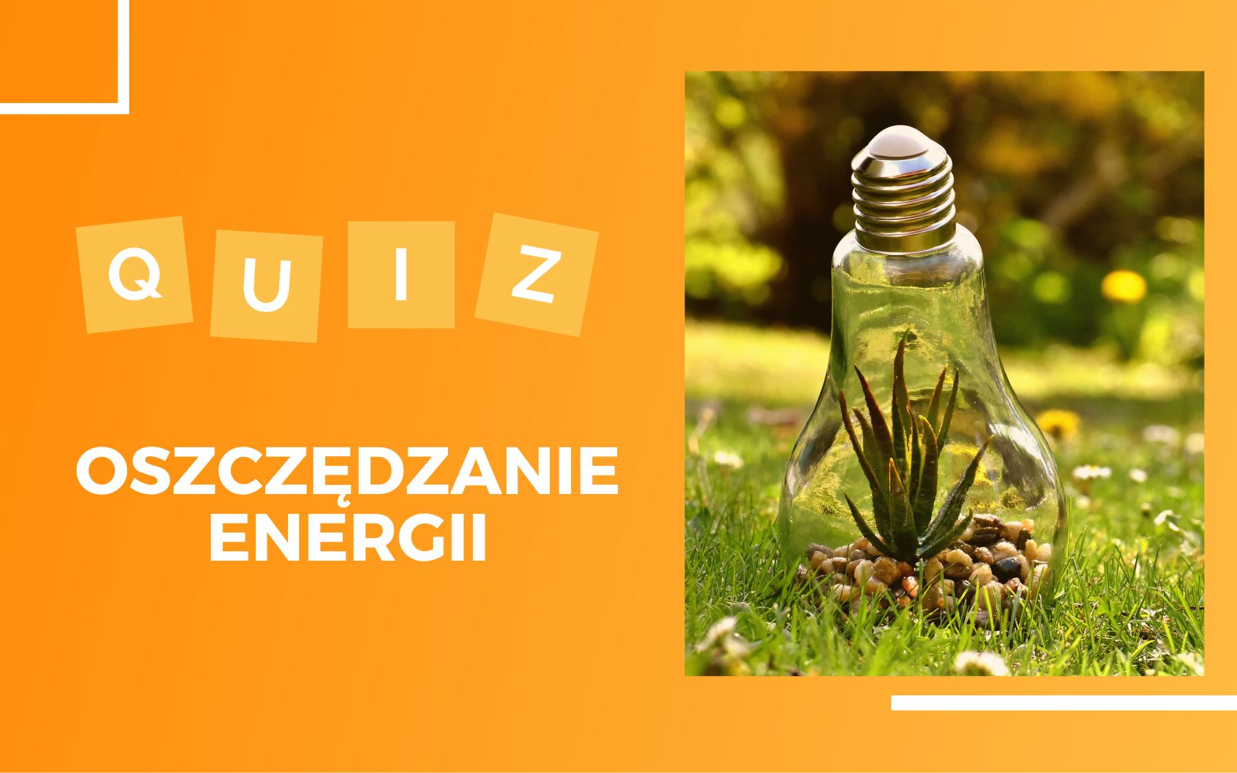 """Po prawej stronie zdjęcie roślinki rosnącej wewnątrz żarówki umieszczonej na trawie w parku. Po lewej biały napis """"Quiz oszczędzanie energii"""""""