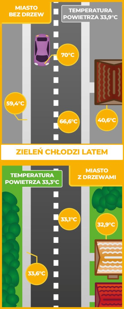 Infografika - porównanie temperatur w mieście (bez drzew i z zielenią miejską).
